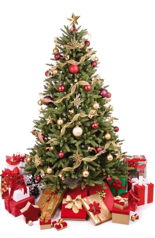 Dodání do Vánoc a poslední expediční den