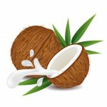 Matrac s kokosovou doskou